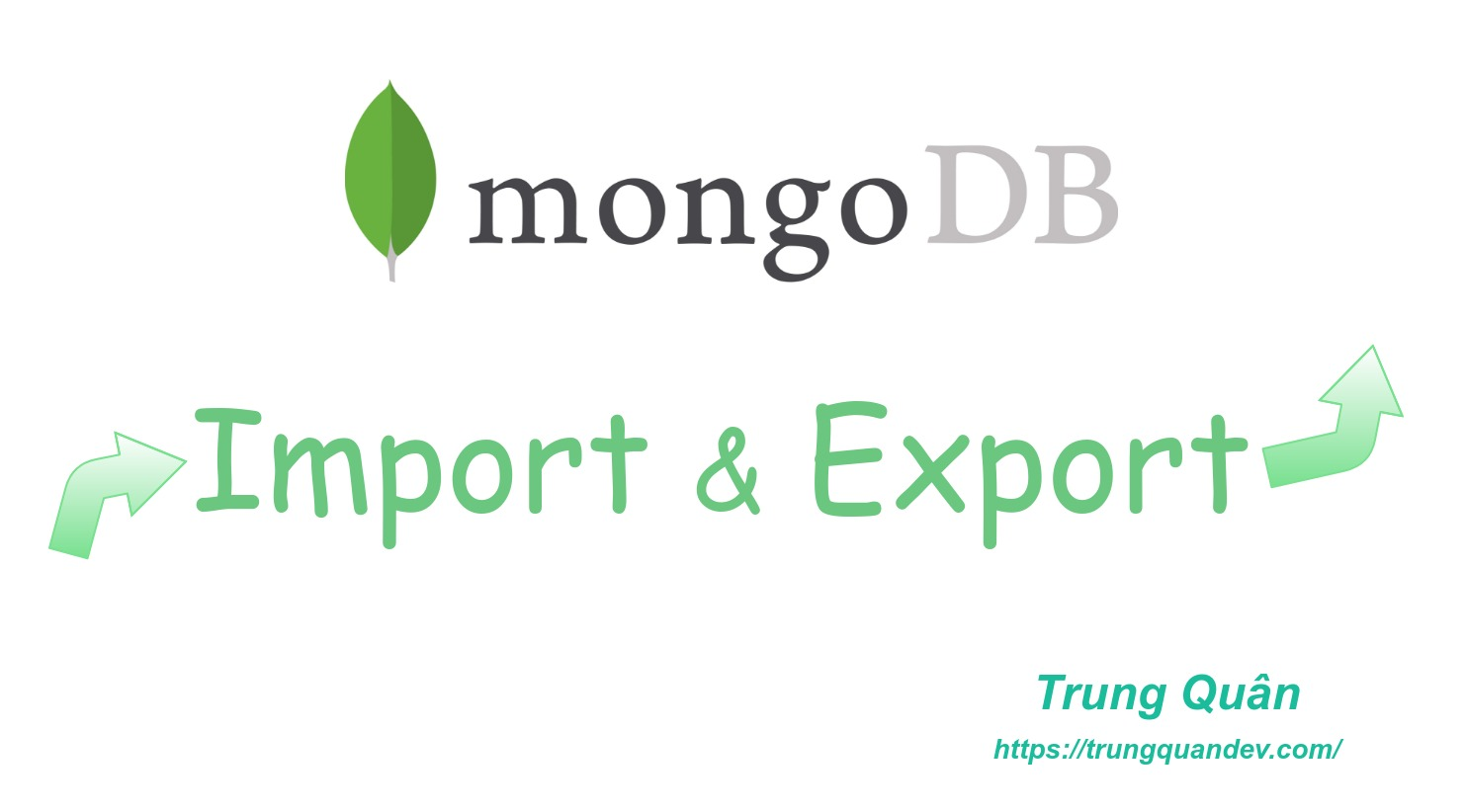 mongodb-import-export-trungquandev